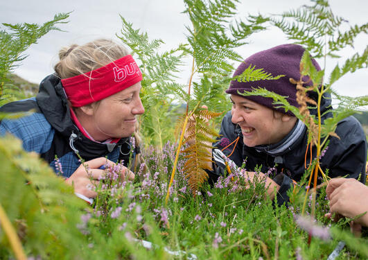 Biologists in the field
