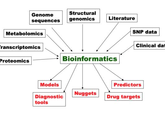 CEDAS Bioinformatics