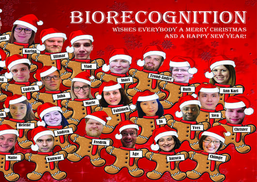 Biorecognition Christmas card 2020