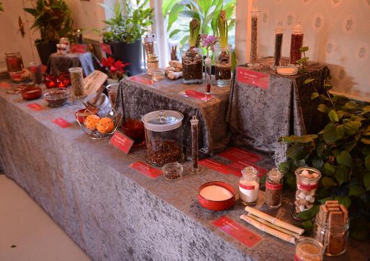 Utstilling av julens planter