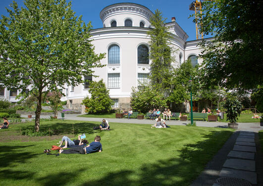The Museum Garden at the University Museum of Bergen on a sunny day in spring 2014.