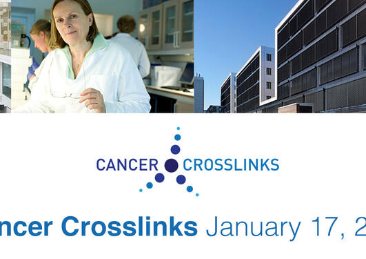 Cancer Crosslinks' logo