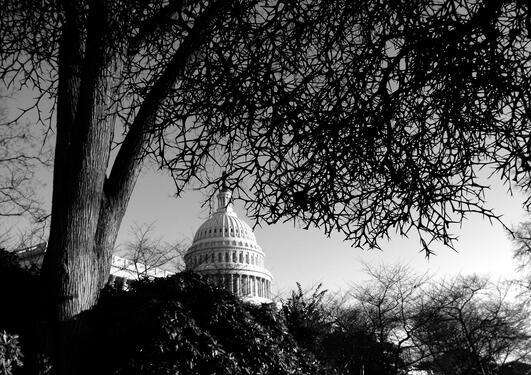 Foto av Capitol-bygningen i Washington