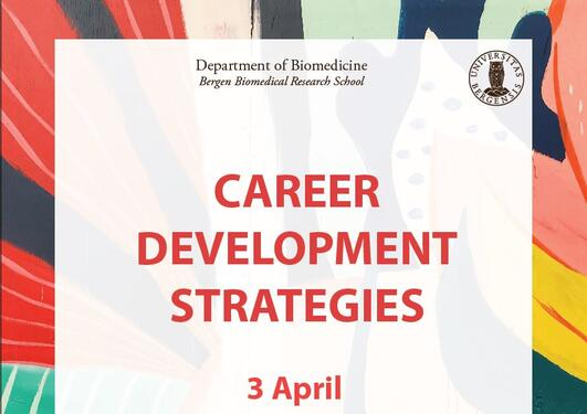 Plakat Career Development Strategies