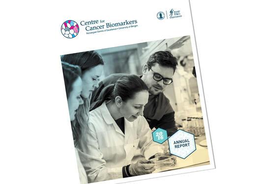 Coverbildet av CCBIOs årsrapport 2016.
