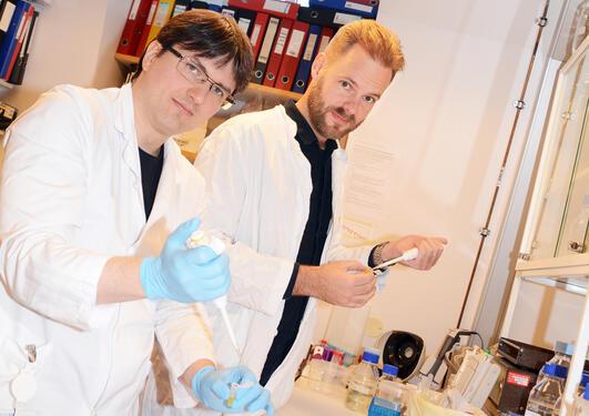 Gruppeleder Charalampos Tzoulis (til høyre) og artikkelens førsteforfatter, Christian Dölle (til venstre)
