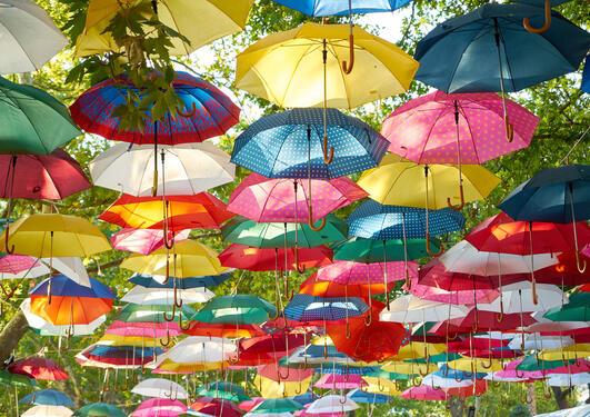 Fargerike paraplyer henger fra trær