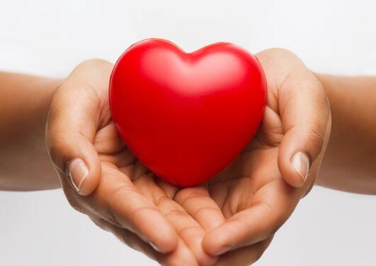 Hands holding heart shaped figure