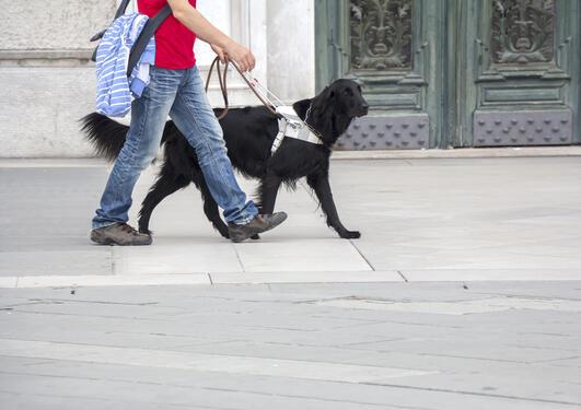 Person med førerhund