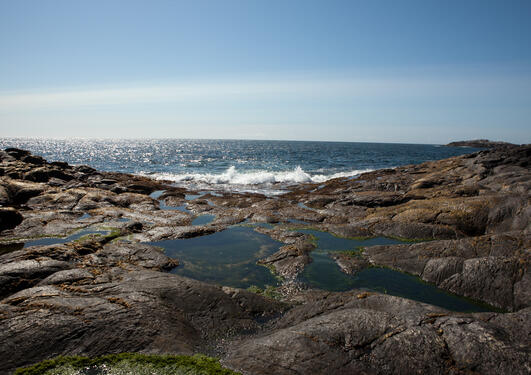 Bilde av kysten ved Nordsjøen