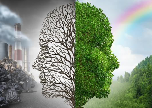 Poverty, climate, sustainability