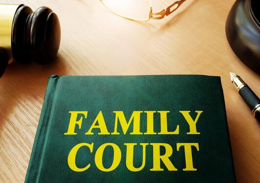"""Bildet viser en dommerklubbe og en lovsamling med tittelen """"Family court""""."""