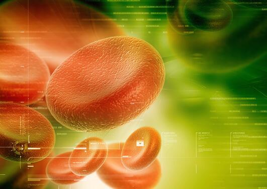Illustrasjonsbilete, blodcelle