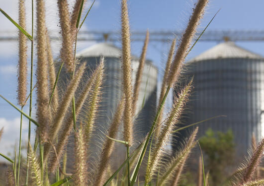 Image of factory with greens crops in foreground