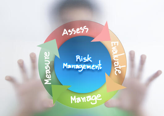 visualisering av elementene innen risk management