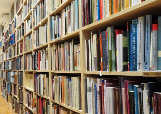 Bildet viser et bibliotek
