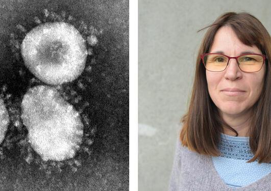 Rebecca Cox on the corona virus.