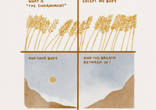 """lllustrations in yellow, orange and blue-grey of grain ears, the sky, the sun and mountains, and the text: """"What is 'the environment? Except my body. And your body. And the breath between us?"""""""