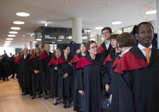 PhD candidates before the promotion service
