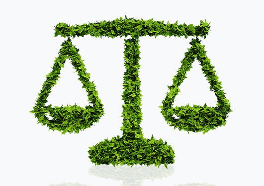 enivronmental law 2