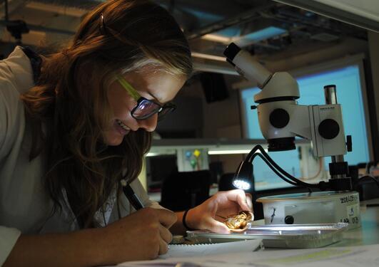 biologi student med mikroskop