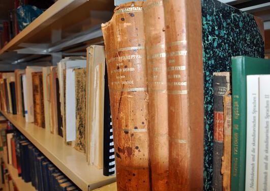 Bilde av bøker fra språksamlingen
