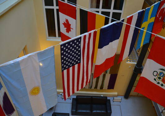 Ten flags at Comparative Politics