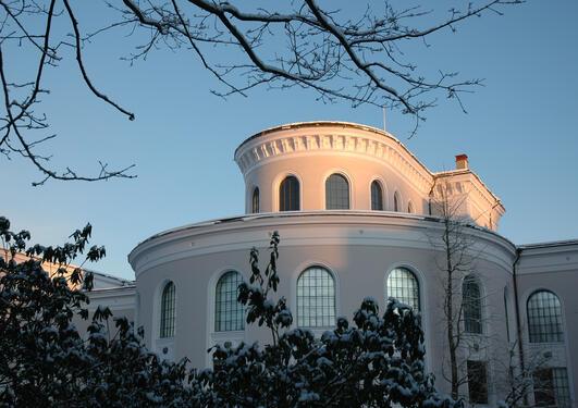 Universitetsmuseet, vinterdag