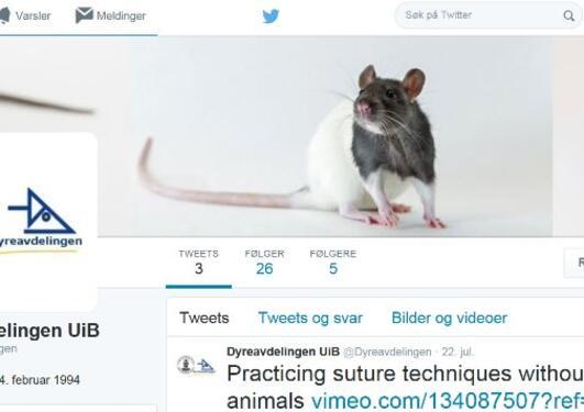 Dyreavdelingen på Twitter