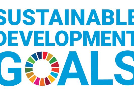 sqare SDG logo without un emblem