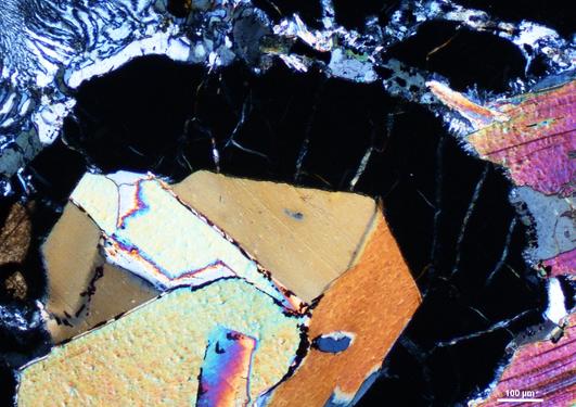 Sample of eclogite-biotite