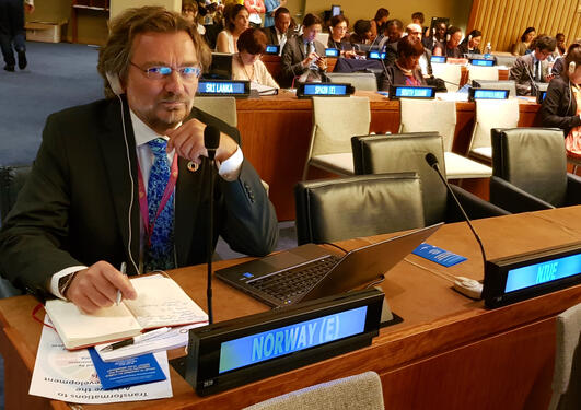 Professor Edvard Hviding from the University of Bergen's SDG Bergen initiative at the High-level Political Forum 2018 iat the United Nations in New York City, in July 2018.