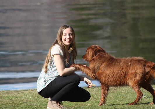 Ung kvinne på huk og en hund som gir labb