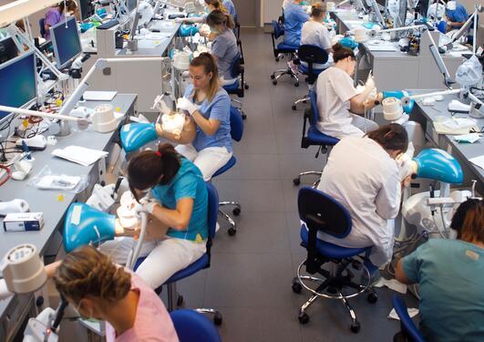 Tannpleiestudenter jobber