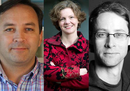 Thomas Arnesen, Jill Walker Rettberg og Harald Sodemann har motteke ERC Consolidator Grants for sine prosjekt.