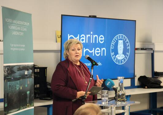 Erna Solberg på Havlaben ved UiB