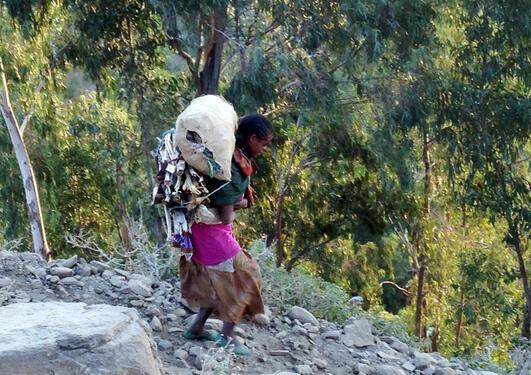 Gondar in Amhara region, northwest Ethiopia. Photo: Janne L. Gjerde