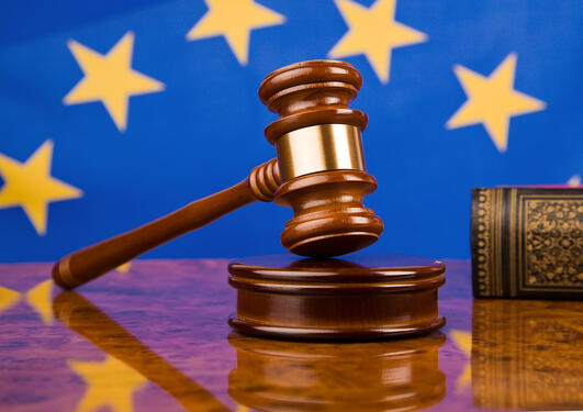 A gavel in court with an European flag in the background