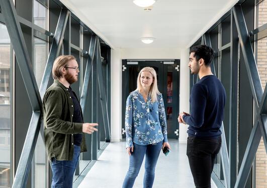 Forskere diskuterer i gangen