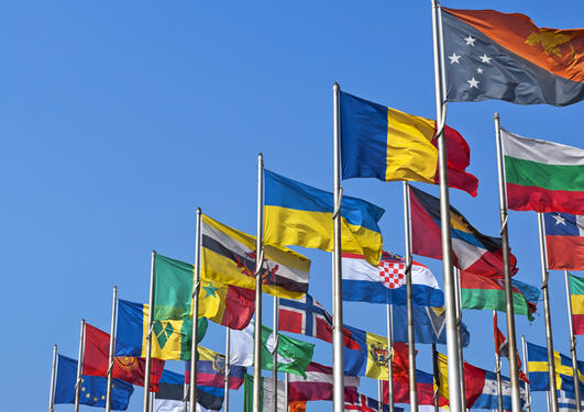 A picture of a lot of flags from different countries, symbolising international institutions and organisations