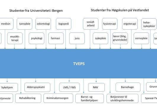 TVEPS-praksis studenter og praksisarenaer