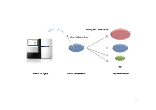 Genetic analyses process