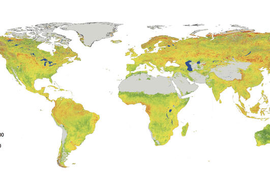 A world map showing the sensitivity of vegetation to climate