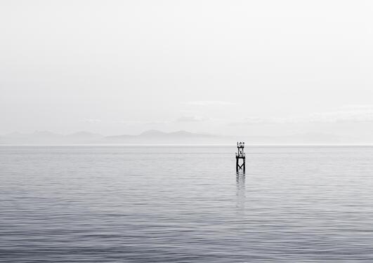 bergen marine forskningsklynge
