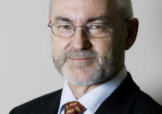 Professor Sigmund Grønmo