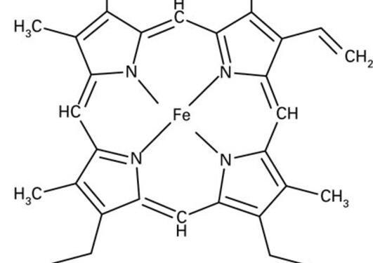 Haemoglobin picture