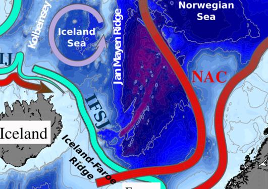 havsirkulasjon_toppbilde