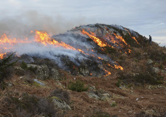 A small rocky knoll in burning heathland