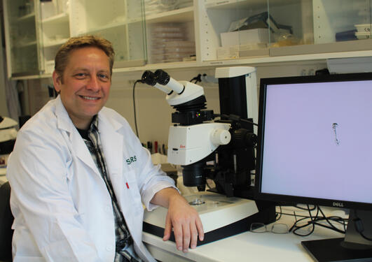 Researcher Andreas H. Hejnol, Sars International Centre for Marine Molecular Biology, University of Bergen (UiB).