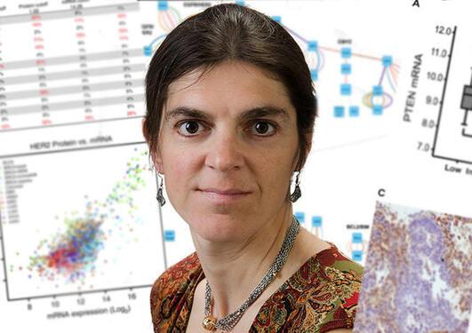 CCBIO postdoc får forskningspris i onkologi